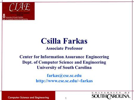 Computer Science and Engineering 1 Csilla Farkas Associate Professor Center for Information Assurance Engineering Dept. of Computer Science and Engineering.