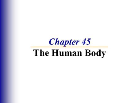 Chapter 45 The Human Body.