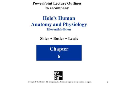 1 Hole's Human Anatomy and Physiology Eleventh Edition Shier  Butler  Lewis Chapter 6 Copyright © The McGraw-Hill Companies, Inc. Permission required.