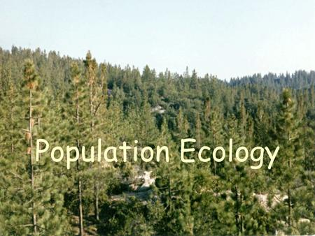 Population Ecology. What is Ecology? Study of organisms, their environment and interactions Different types of ecology Not environmentalists!