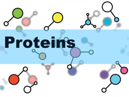 Proteins. PROTEINS Amino acids contain an amino group, a carboxyl group, a carbon and a unique R group.