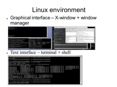 Linux environment ● Graphical interface – X-window + window manager ● Text interface – terminal + shell.