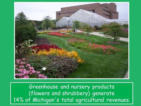 Greenhouse and nursery products (flowers and shrubbery) generate 14% of Michigan's total agricultural revenues.