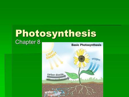 Photosynthesis Chapter 8. Photosynthesis  Reaction  6CO 2 + 6H 2 0 + light = C 6 H 12 O 6 + 6O 2  Photosynthesis uses energy from the sun to convert.