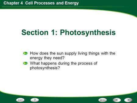 Chapter 4 Cell Processes and Energy How does the sun supply living things with the energy they need? What happens during the process of photosynthesis?