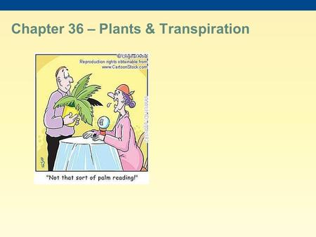 Chapter 36 – Plants & Transpiration. The success of plants depends on their ability to gather and conserve resources from their environment The transport.