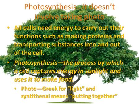 Photosynthesis…it doesn't involve taking photo All cells need energy to carry out their functions such as making proteins and transporting substances into.