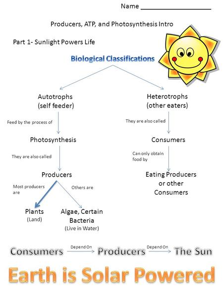 Name ___________________ Producers, ATP, and Photosynthesis Intro Part 1- Sunlight Powers Life Autotrophs (self feeder) Heterotrophs (other eaters) Feed.