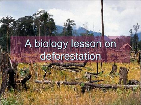A biology lesson on deforestation. Objectives of the lesson Content objective: Students should be able to define deforestation, identify its causes,