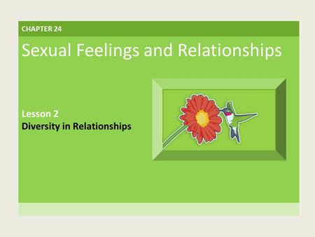 CHAPTER 24 Sexual Feelings and Relationships Lesson 2 Diversity in Relationships.