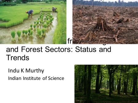 Global Emissions from the Agriculture and Forest Sectors: Status and Trends Indu K Murthy Indian Institute of Science.
