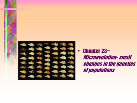 Chapter 23~ Microevolution- small changes in the genetics of populations.