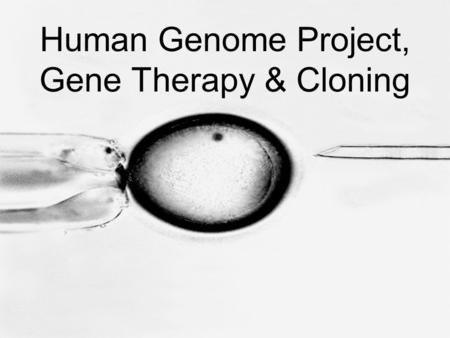 Human Genome Project, Gene Therapy & Cloning. Human Genome Project –Genomics – the study of complete sets of genes –Begun in 1990, the Human Genome Project.