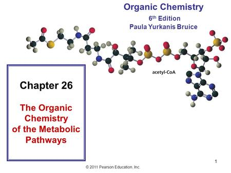 © 2011 Pearson Education, Inc. 1 Chapter 26 The Organic Chemistry of the Metabolic Pathways Organic Chemistry 6 th Edition Paula Yurkanis Bruice.