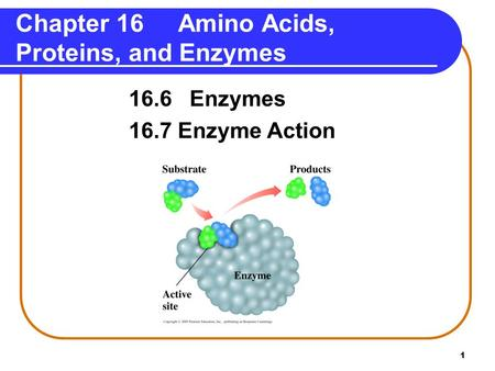 1 Chapter 16 Amino Acids, Proteins, and Enzymes 16.6 Enzymes 16.7 Enzyme Action.