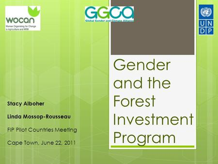 Gender and the Forest Investment Program Stacy Alboher Linda Mossop-Rousseau FIP Pilot Countries Meeting Cape Town, June 22, 2011.