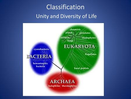 Classification Unity and Diversity of Life