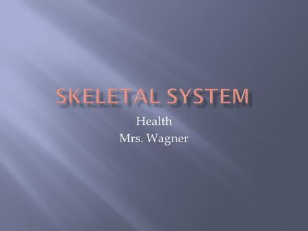 Health Mrs. Wagner.  Support your body  Give it shape  Work with muscles so you can move  Bones – store important minerals and release them to the.