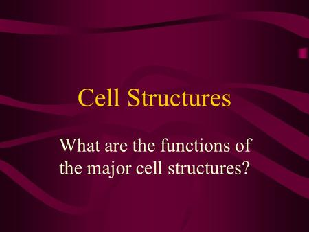 What are the functions of the major cell structures?