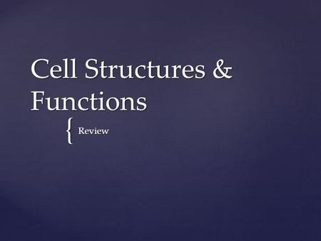 { Cell Structures & Functions Review. What type of cell?