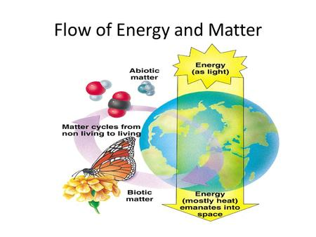 Flow of Energy and Matter. Ecosystem Recycling Energy and matter flow through an ecosystem Plants get energy from the sun We get energy from what we eat.
