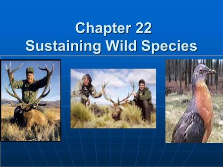 Chapter 22 Sustaining Wild <strong>Species</strong> Chapter 22 Sustaining Wild <strong>Species</strong>.