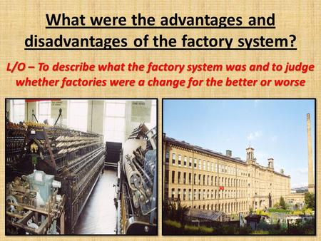 What were the advantages and disadvantages of the factory system?