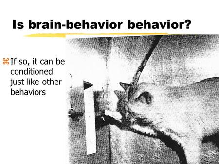 Is brain-behavior behavior? zIf so, it can be conditioned just like other behaviors.