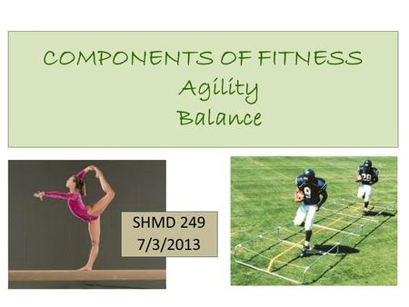 COMPONENTS OF FITNESS Agility Balance SHMD 249 7/3/2013.