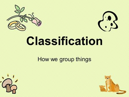 Classification How we group things.
