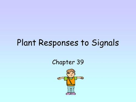 Plant Responses to Signals Chapter 39. Plants have to respond to gravity and other stimuli in environment. Growth pattern in plants - reaction to light.