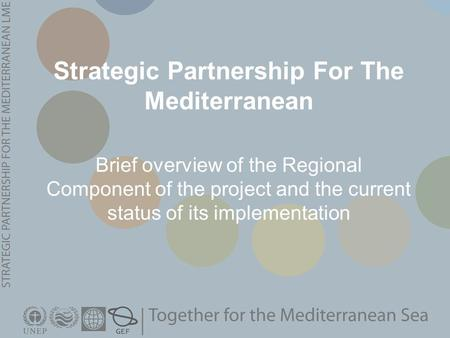Strategic Partnership For The Mediterranean Brief overview of the Regional Component of the project and the current status of its implementation.