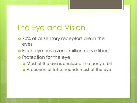The Eye and Vision 70% of all sensory receptors are in the eyes