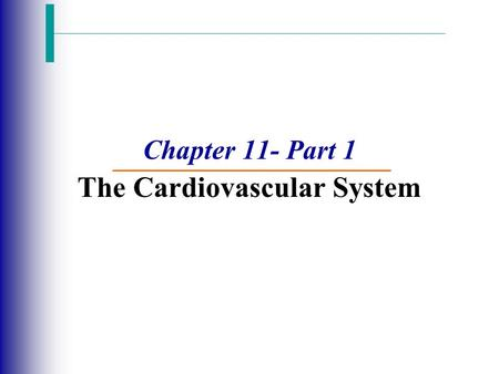 Chapter 11- Part 1 The Cardiovascular System. The Cardiovascular System  A closed system of the heart and blood vessels  The heart pumps blood  Blood.