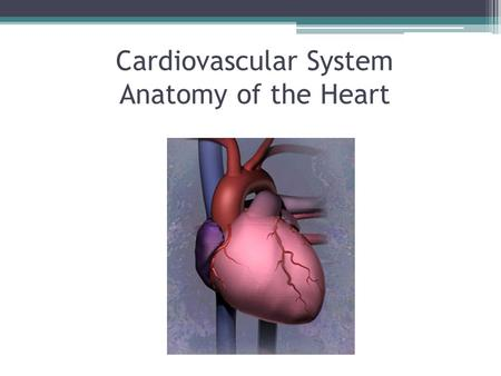 "Cardiovascular System Anatomy of the Heart. The Cardiovascular system is comprised of the heart, blood vessels, & blood The heart acts as a ""pump"", creating."