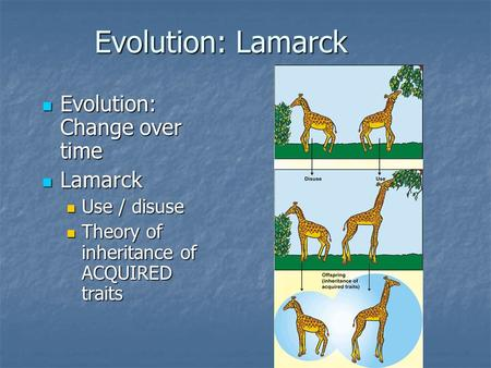 Evolution: Lamarck Evolution: Change over time Evolution: Change over time Lamarck Lamarck Use / disuse Use / disuse Theory of inheritance of ACQUIRED.