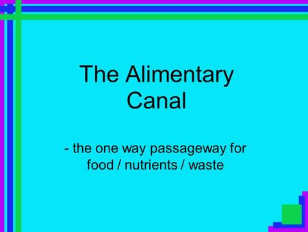 The Alimentary Canal - the one way passageway for food / nutrients / waste.