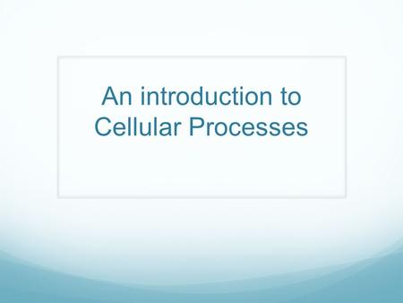 An introduction to Cellular Processes. Learning Objectives SWBAT: Explain why all biological systems require constant energy input to maintain organization,