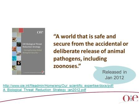 """A world that is safe and secure from the accidental or deliberate release of animal pathogens, including zoonoses."" Released in Jan 2012 http://www.oie.int/fileadmin/Home/eng/Our_scientific_expertise/docs/pdf/A_Biological_Threat_Reduction_Strategy_jan201"