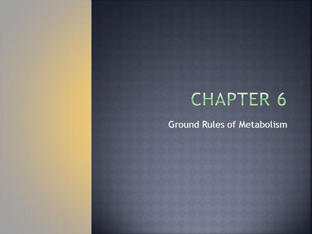 Ground Rules of Metabolism.  Catalase is an enzyme that helps the body break down toxic substances in alcoholic drinks.