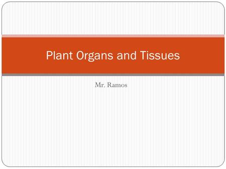 Mr. Ramos Plant Organs and Tissues. Introduction to Plants There are over 260,000 different species of flowering plants alone! Plants are multicellular,