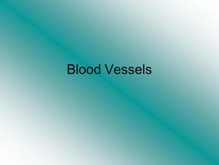 Blood Vessels. Blood Vessels The vascular network through which blood flows to all parts of the body comprises of arteries, arterioles, capillaries, veins.