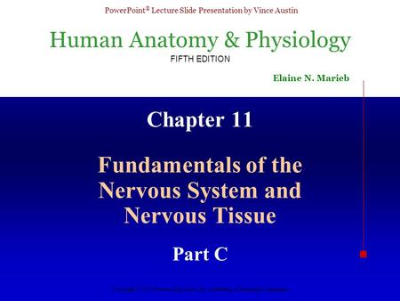 Fundamentals of the Nervous System and Nervous Tissue