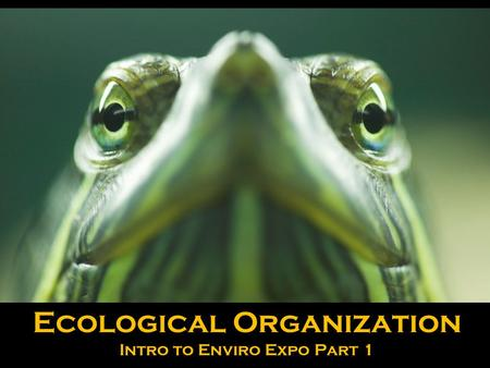 Ecological Organization Intro to Enviro Expo Part 1.
