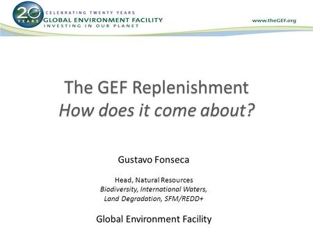 The GEF Replenishment How does it come about? Gustavo Fonseca Head, Natural Resources Biodiversity, International Waters, Land Degradation, SFM/REDD+ Global.