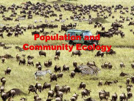 Population and Community Ecology. Complexity POPULATION ECOLOGY.