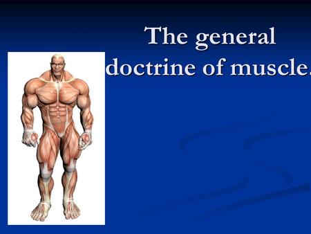 The general doctrine of muscle.