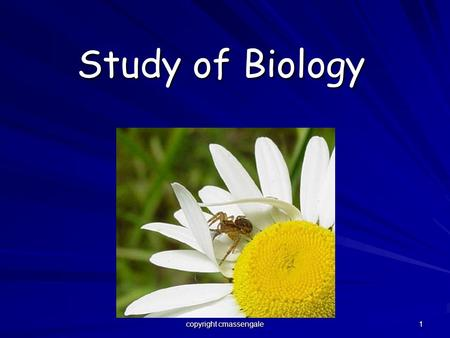 1 Study of Biology copyright cmassengale. 2 What is Biology? Biology is the study of all living things (called organisms). Organisms include bacteria,