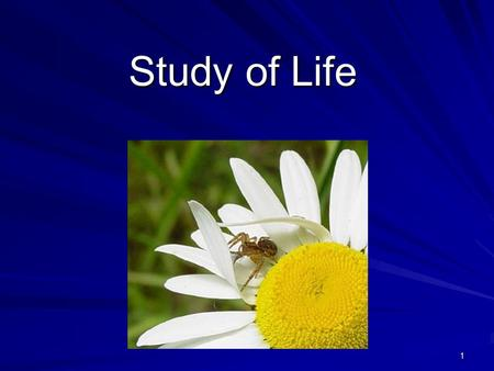 1 Study of Life. 2 What is Biology? Biology is the study of all living things Living things are called organisms Living things are called organisms Organisms.
