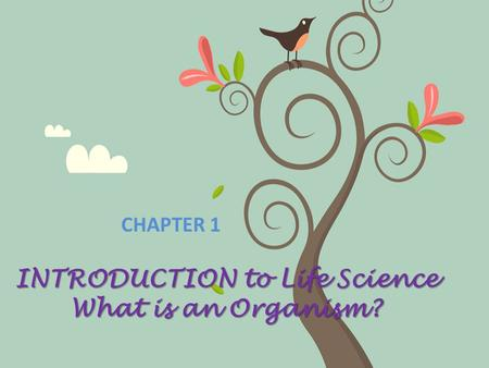 INTRODUCTION to Life Science What is an Organism?